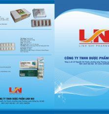 Mẫu tờ gấp A3, giới thiệu sản phẩm về thuốc.